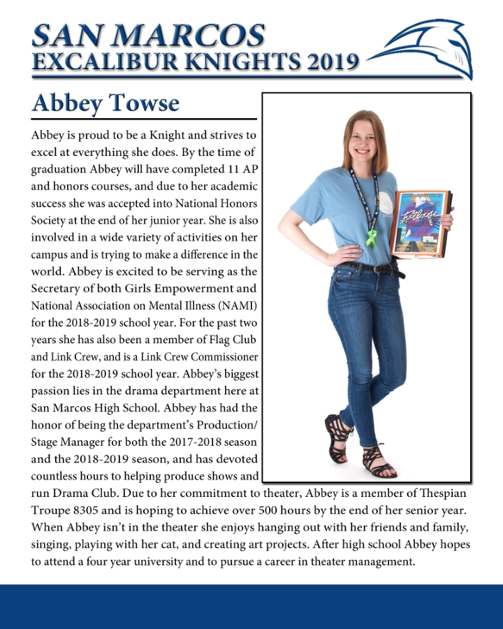 ABBEY TOWSE
